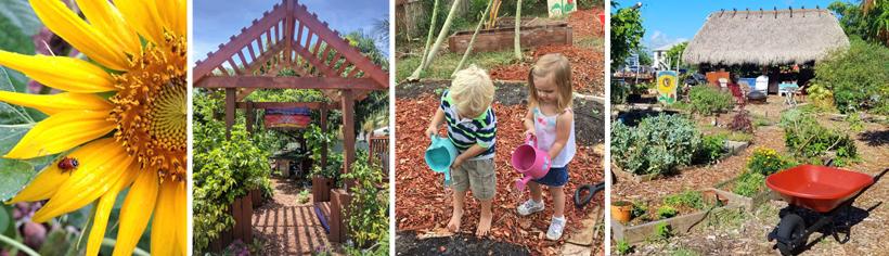 delray-beach-childrens-garden